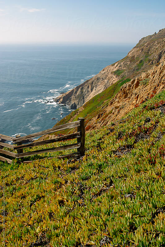 Point Reyes National Seashore Point Reyes Station, California by Raymond Forbes LLC for Stocksy United