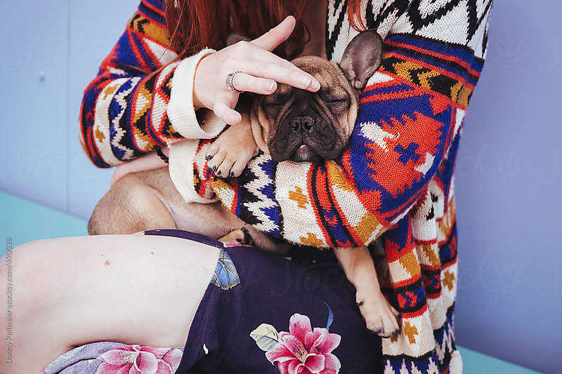 French bulldog in mom's arms by Danny Pellissier for Stocksy United