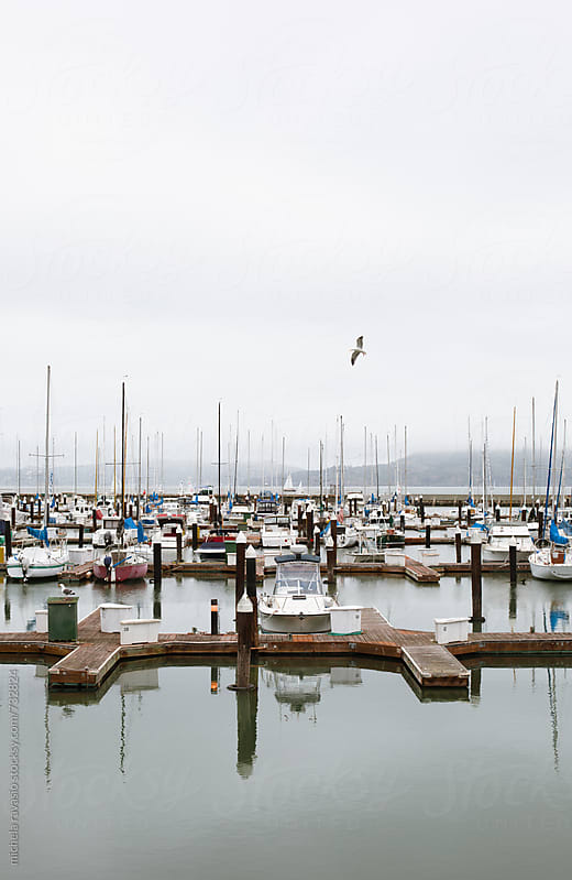 Harbor in San Francisco Bay by michela ravasio for Stocksy United