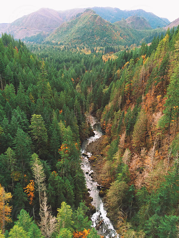 Northwest Autumn Begins by Eric Bowley for Stocksy United