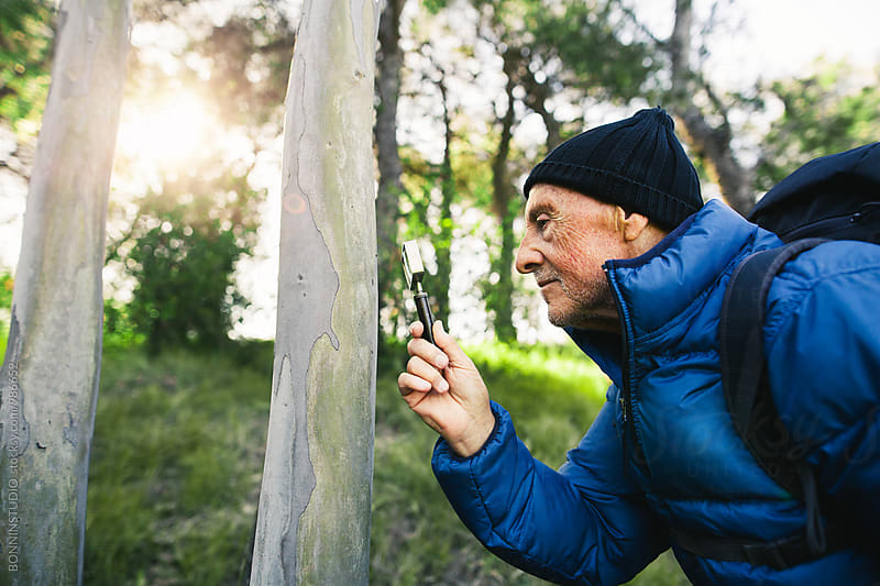Senior man in the woods looking through the magnifying glass. by BONNINSTUDIO for Stocksy United