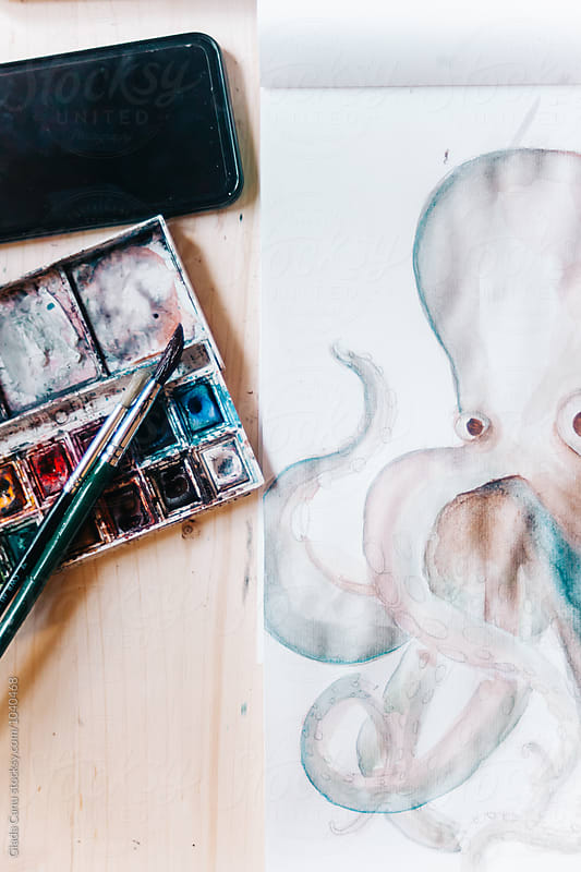 Octopus in watercolor by Giada Canu for Stocksy United