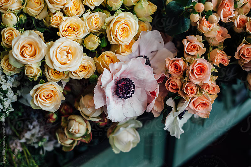 Beautiful Flowers at Florist by Kara Riley for Stocksy United