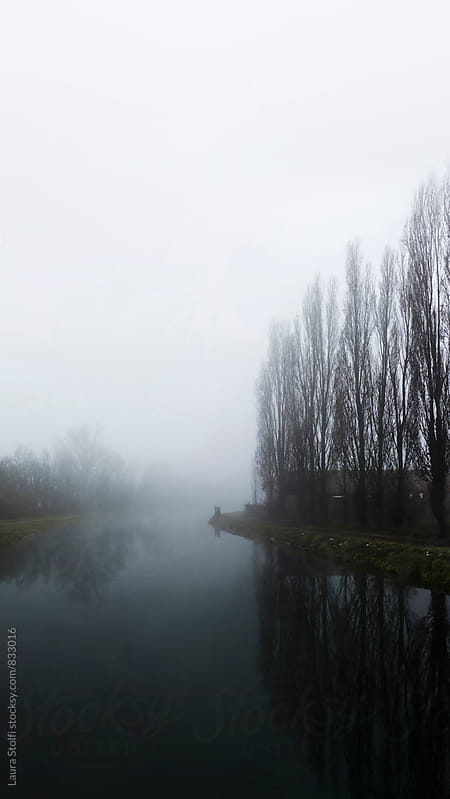 Winter landscape: leafless trees by a river in foggy dust by Laura Stolfi for Stocksy United