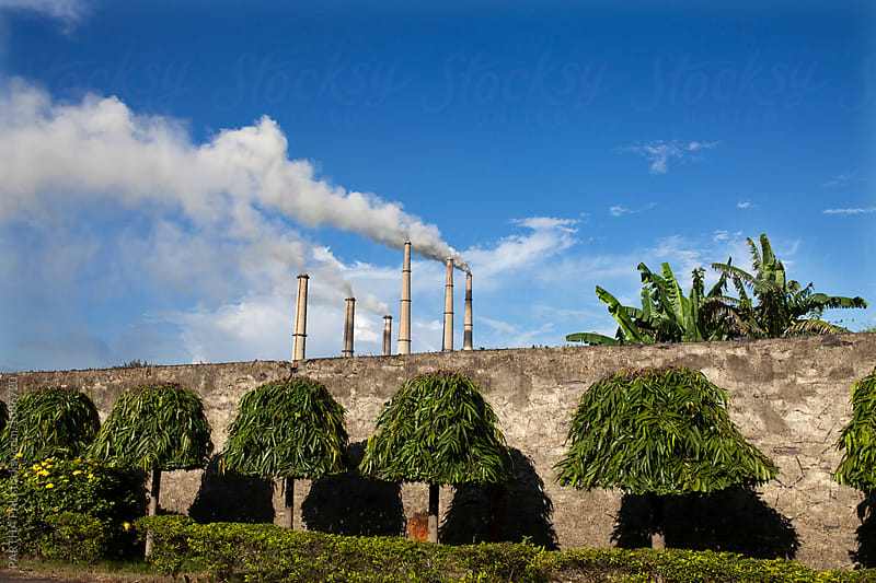 View of Thermal power plant with trimmed trees in front by PARTHA PAL for Stocksy United