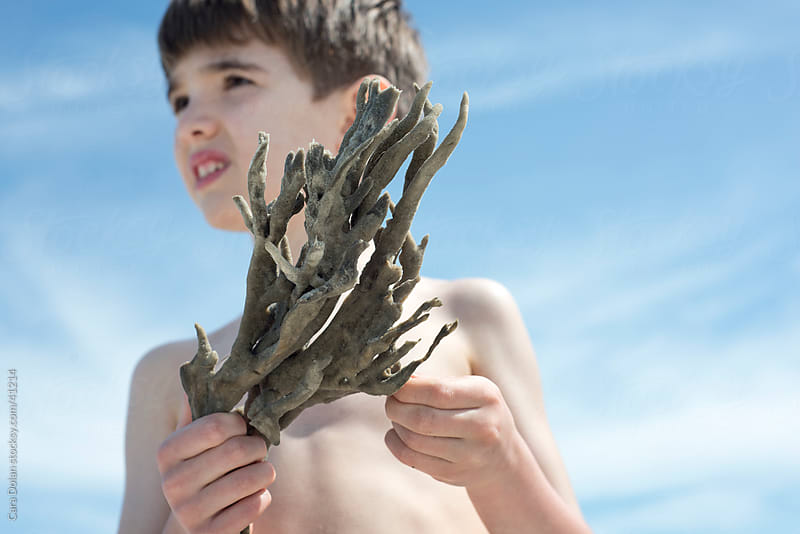 Boy holds natural finger sea sponge  by Cara Dolan for Stocksy United