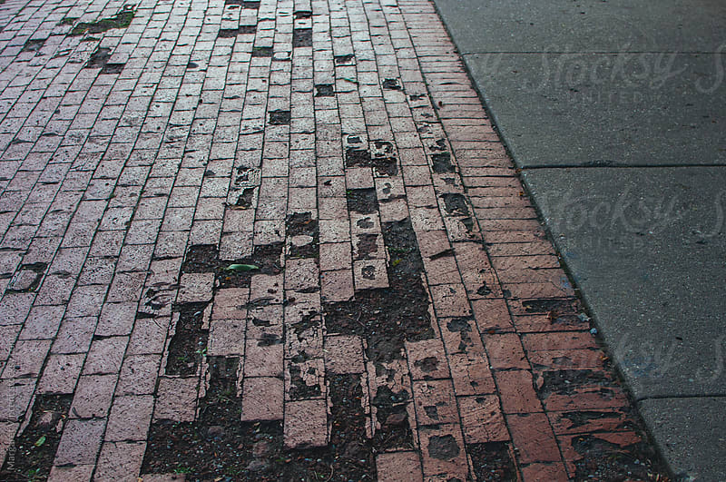 brick walkway with missing bricks by Margaret Vincent for Stocksy United