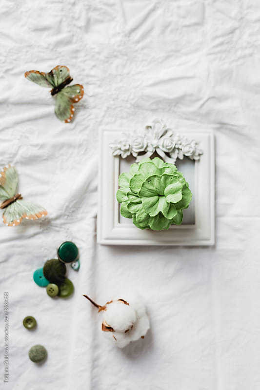 Green cupcake by Tatjana Zlatkovic for Stocksy United