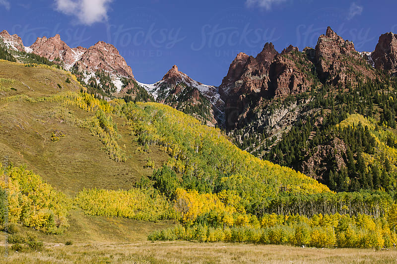 Fall Foliage in Colorado by Raymond Forbes LLC for Stocksy United