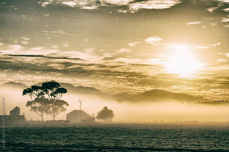 Farm Dawn by craig ferguson for Stocksy United