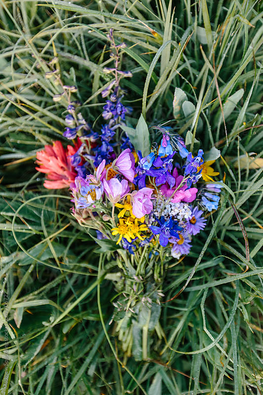 Bouquet of different colorful wildflowers by Matthew Spaulding for Stocksy United