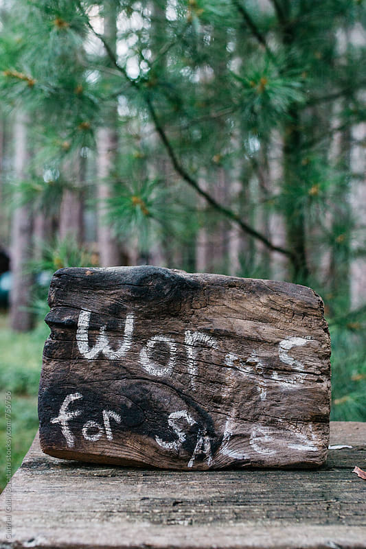 Worms for Sale sign in a forest by Gabriel (Gabi) Bucataru for Stocksy United