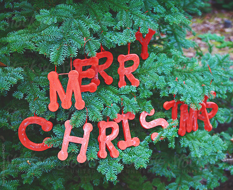 Wood letters spelling Merry Christmas hang in a fir tree by Tana Teel for Stocksy United