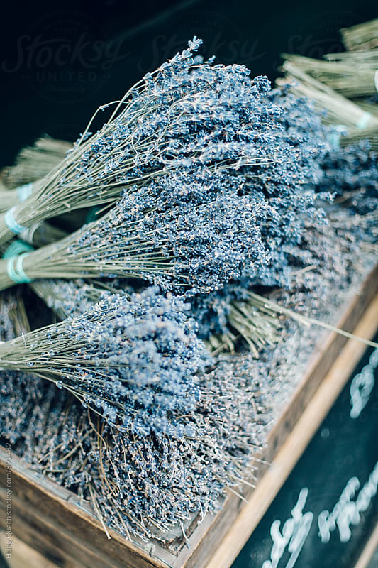 Dried Lavender For Sale by Hung Quach for Stocksy United