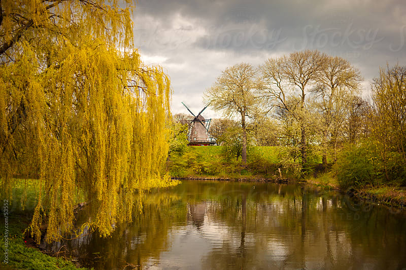 Windmill on lake  by Zocky for Stocksy United