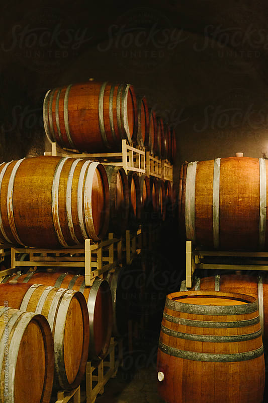 wine barrels by Cameron Zegers for Stocksy United