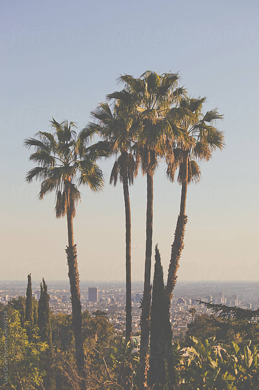 Los Angeles  by Luke Gram for Stocksy United