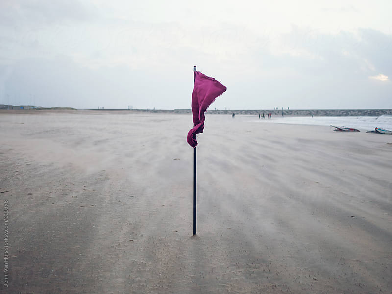Flag on the beach on a windy day by Denni Van Huis for Stocksy United