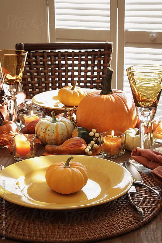 Festive table for thanksgiving dinner by Sandra Cunningham for Stocksy United