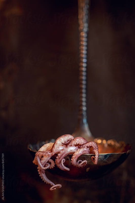 Octopus and ladle by alan shapiro for Stocksy United