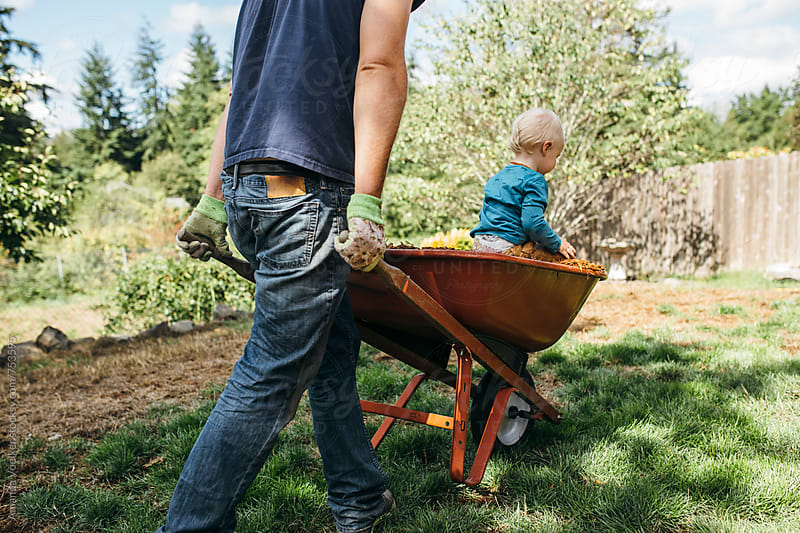 Toddler boy being pushed by his dad in a wheelbarrow  by Amanda Voelker for Stocksy United