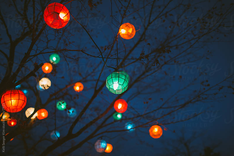 A tree decorated with colorful lanterns in December by Kelli Seeger Kim for Stocksy United