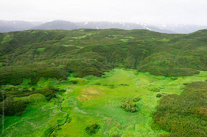 Green carpet of trees, shrubs and grass covering a  hill top by Mihael Blikshteyn for Stocksy United