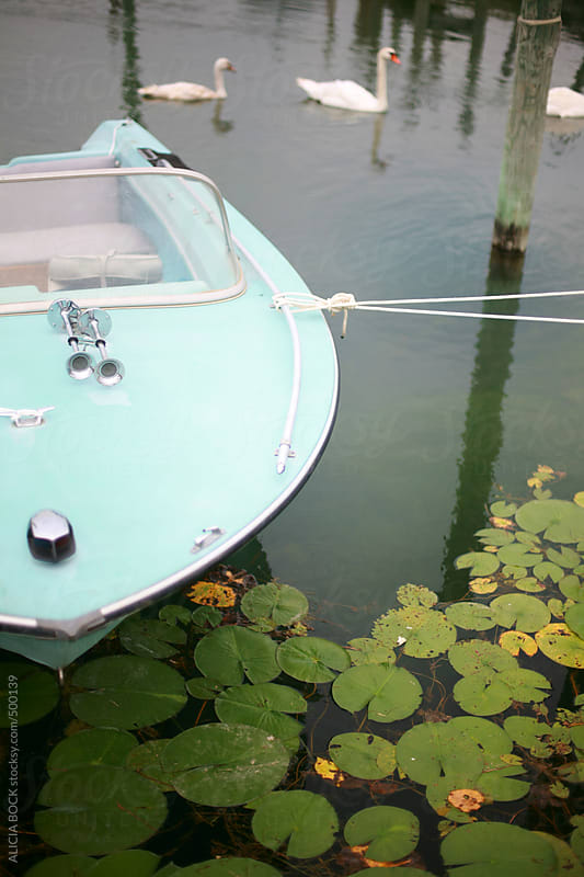 A Vintage Boat Tied In A Harbor With Lily pads and Swans by ALICIA BOCK for Stocksy United