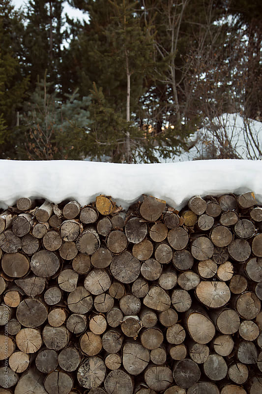 pile of wood timber outdoor by Sonja Lekovic for Stocksy United