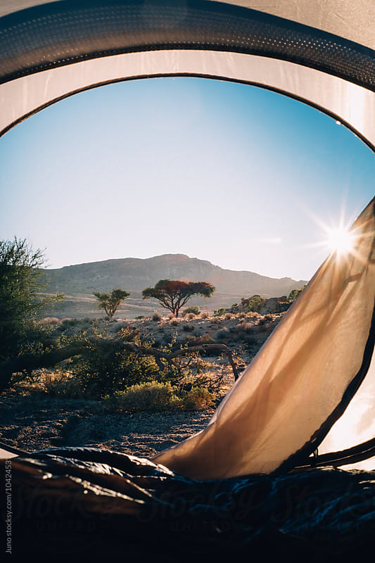 View from inside a tent across the african bush at sunrise by Micky Wiswedel for Stocksy United