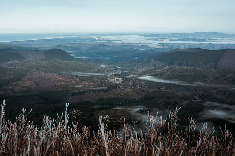 Oregon Coast from Saddle Mountain by Evan Dalen for Stocksy United