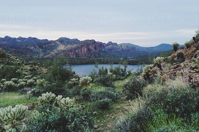 Saguaro Lake by Kevin Russ for Stocksy United