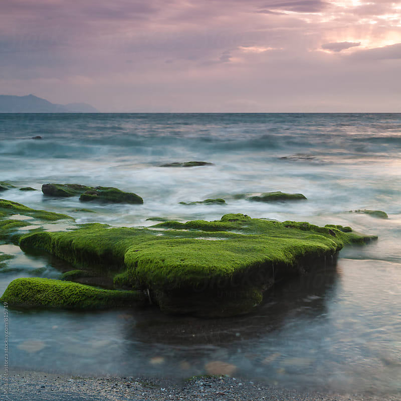 Mossy rocks in the seaside by Marilar Irastorza for Stocksy United