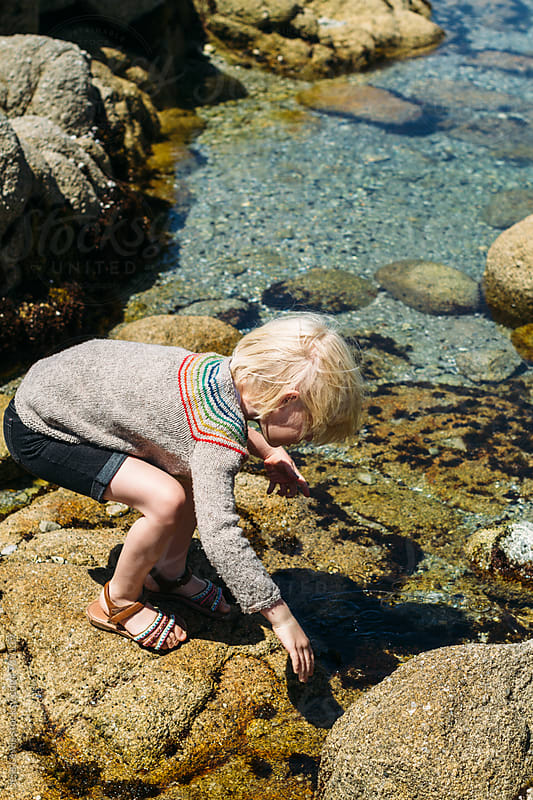 young girl exploring tidepool  by Jess Lewis for Stocksy United