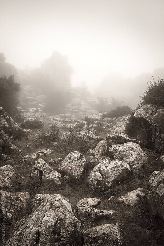 Landscape with fog and rocks by ACALU Studio for Stocksy United
