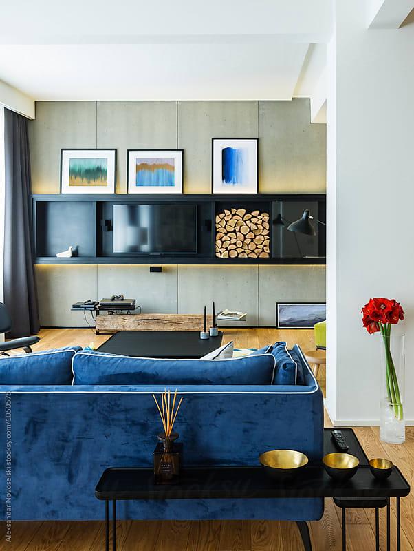 Modern luxurious living room by Aleksandar Novoselski for Stocksy United