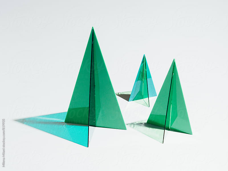 Geometric trees by Milena Milani for Stocksy United