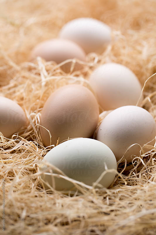 Close Up Of Chicken Eggs In Nest by Maa Hoo for Stocksy United