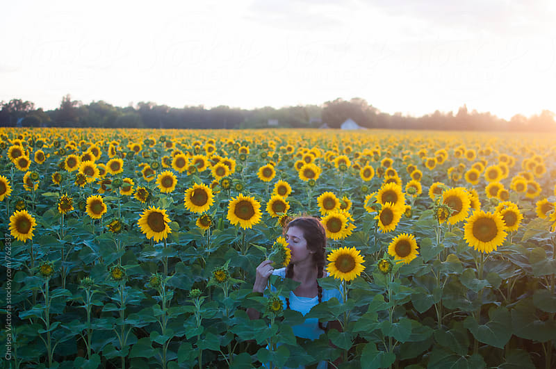 A woman smelling a sunflower in a field at sunset by Chelsea Victoria for Stocksy United