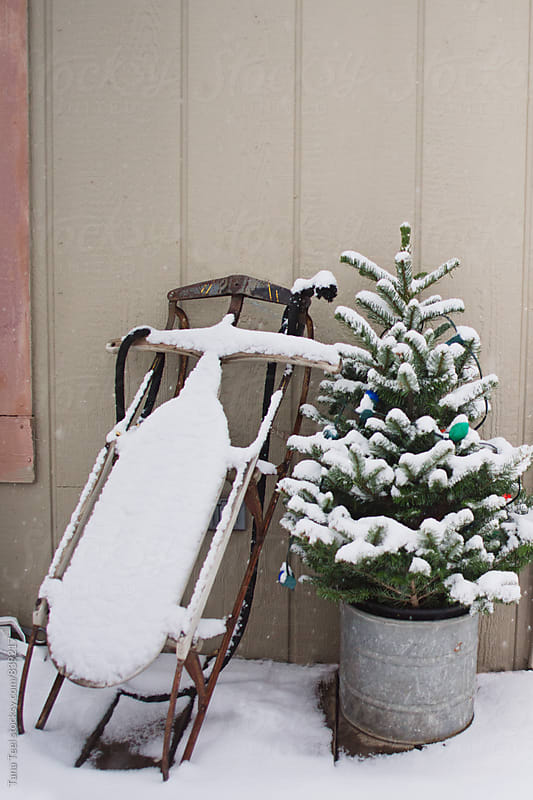 Antique wooden sled decorate snowy porch by Tana Teel for Stocksy United