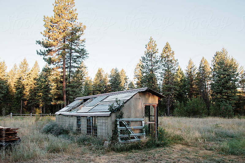 Dilapidated shed on a rural property by Justin Mullet for Stocksy United