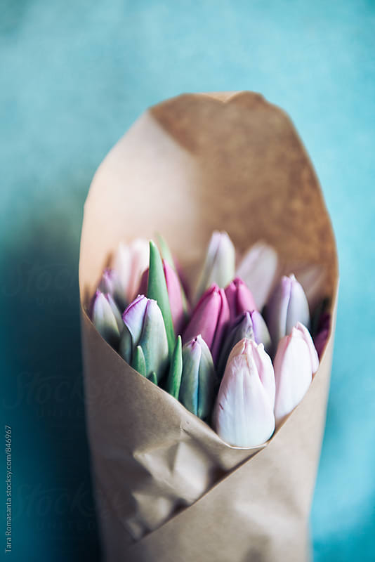 tulip bouquet wrapped in brown paper by Tara Romasanta for Stocksy United