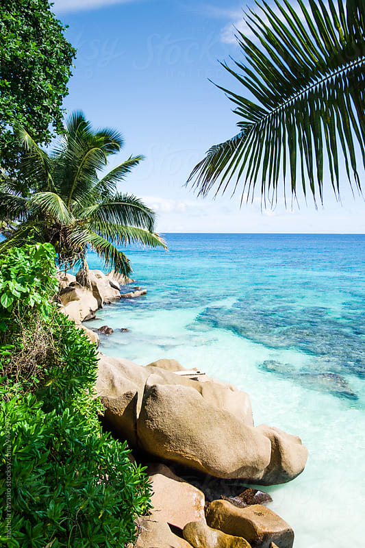 Picturesque view of the coast in La Digue Island by michela ravasio for Stocksy United
