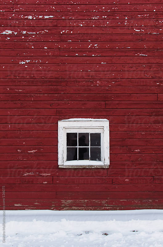 wall of a red barn with a paned window in the snow by Deirdre Malfatto for Stocksy United