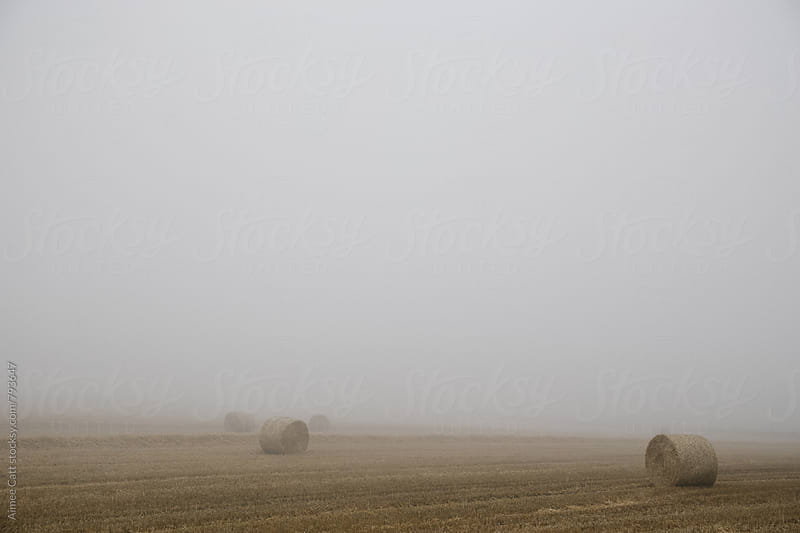 Hay Bales in Foggy England by Aimee Catt for Stocksy United