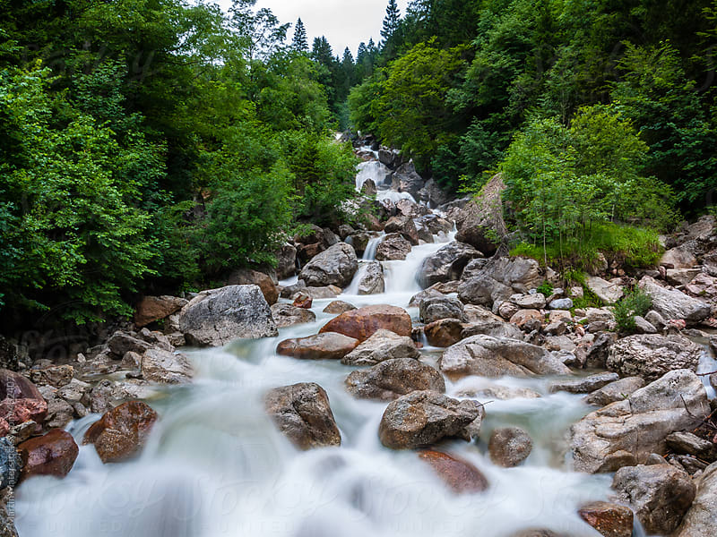 Water flowing over the rocks and through forest by Martin Matej for Stocksy United