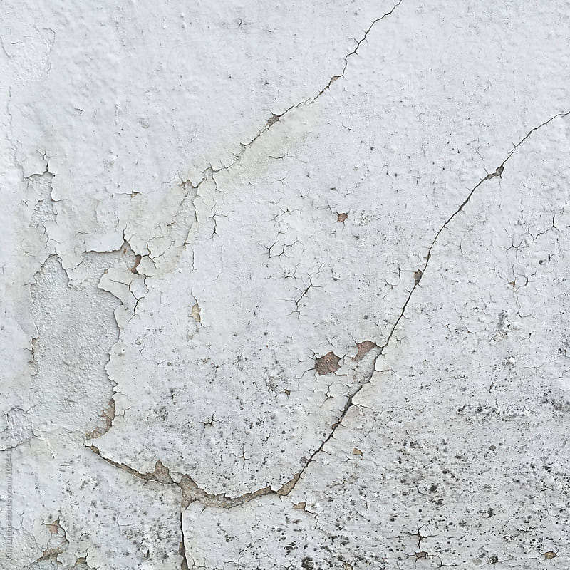 Crack in Wall by Kim Lucian for Stocksy United