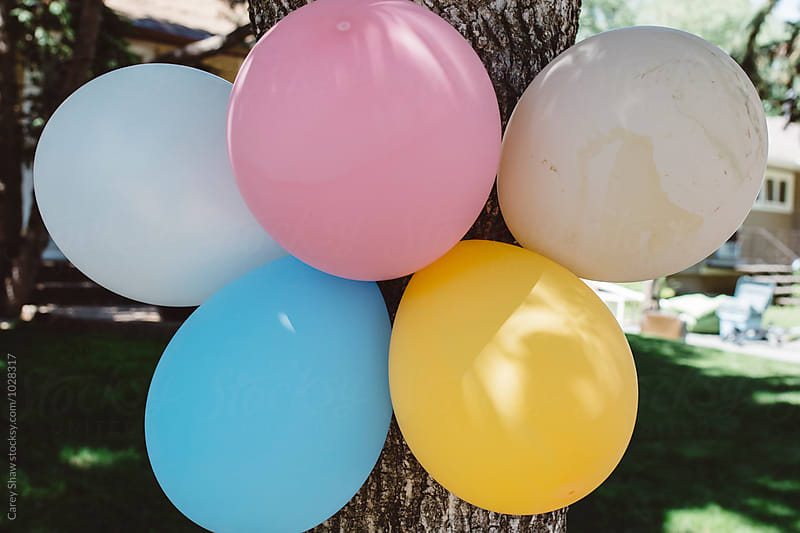 Colorful balloons by Carey Shaw for Stocksy United