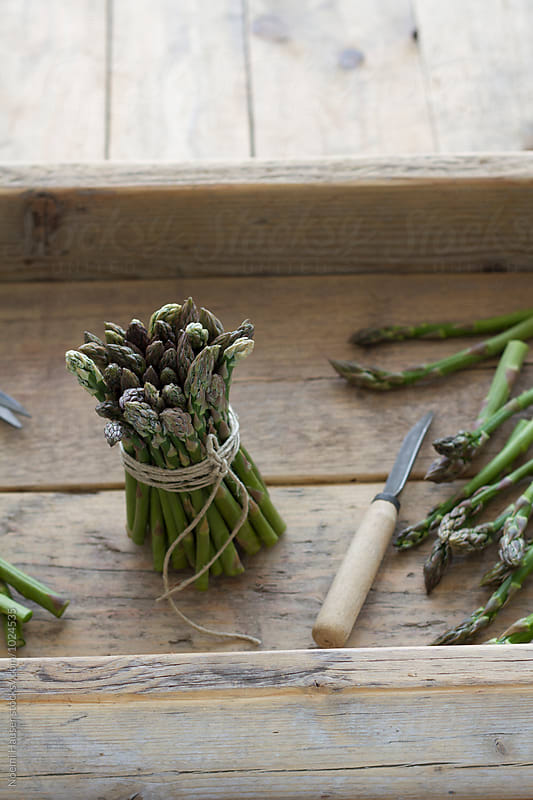 Green asparagus by Noemi Hauser for Stocksy United