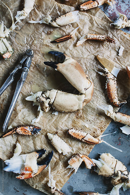 Deconstructed crab parts on paper, ready to be prepared for crab cake recipe.  by Darren Muir for Stocksy United